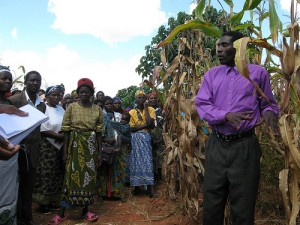 Vella Chipofya shows off his fields at Emazinyeni Field Day. (Photo Credit: Lauren Classen)